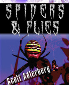 Spiders & Flies