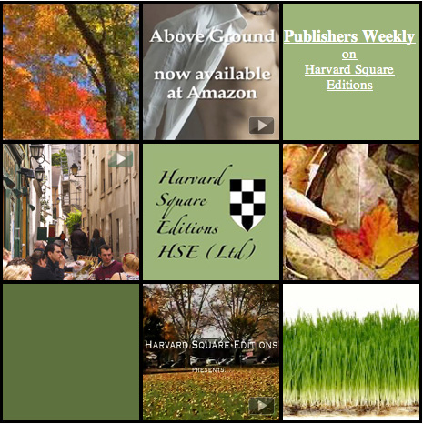 Political Literary Fiction Publisher by Harvard Alumni